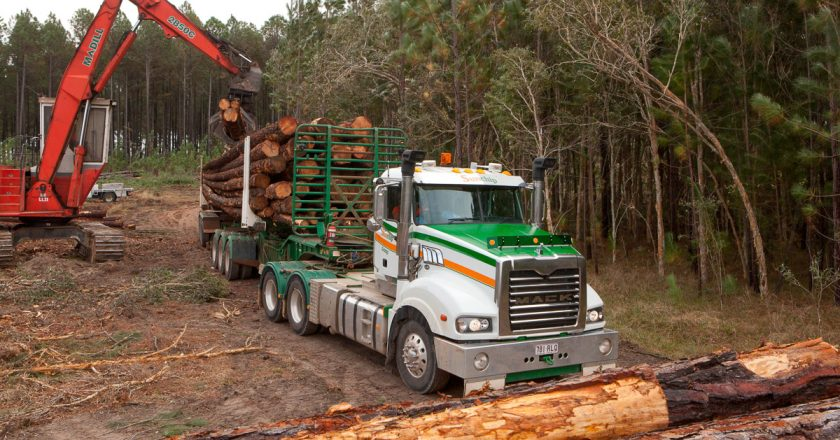 harvesting and transporting plantation timber