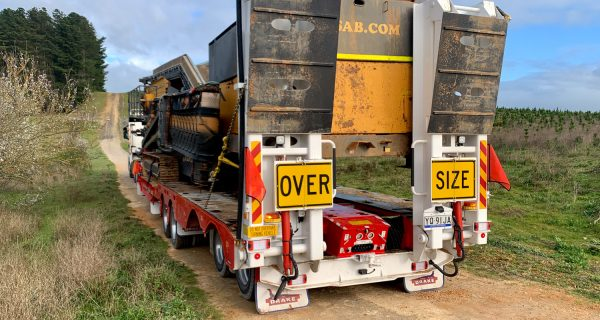 the fickle game of road transport